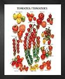 1art1 Tomaten Poster Kunstdruck und MDF-Rahmen - Les