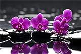 FAWFAW Puzzles 1000 Piezas, Orquídeas Moradas sobre Piedras Negras, Reflejo En El Agua