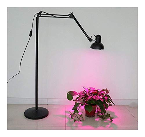 SXFYHXY Plant Growing Lamps Floor Lamp Succulent Plant Growth Lamp Fill Light E27 Universal Bracket Fixed Lamp Holder Floor Lamp Holder Durable Organic plant lights growth lamps
