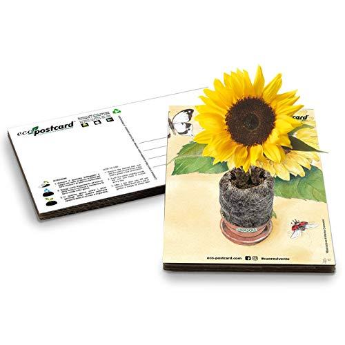Eco-Postcard | Regalo ecologico con semi di Girasole | Biglietto d'auguri crescita pianta di Girasole | Orto in casa