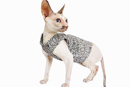 Kotomoda Katzen Kleidung T-shirt GreyCats (S)