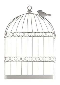 Best birdcage wall decor Reviews