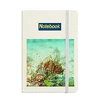 ミノカサゴの海の海洋生物 ノートブッククラシックジャーナル日記A 5