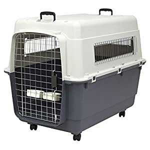 SportPet Designs Plastic Kennels Rolling Plastic Wire Door Travel Dog Crate, XXL