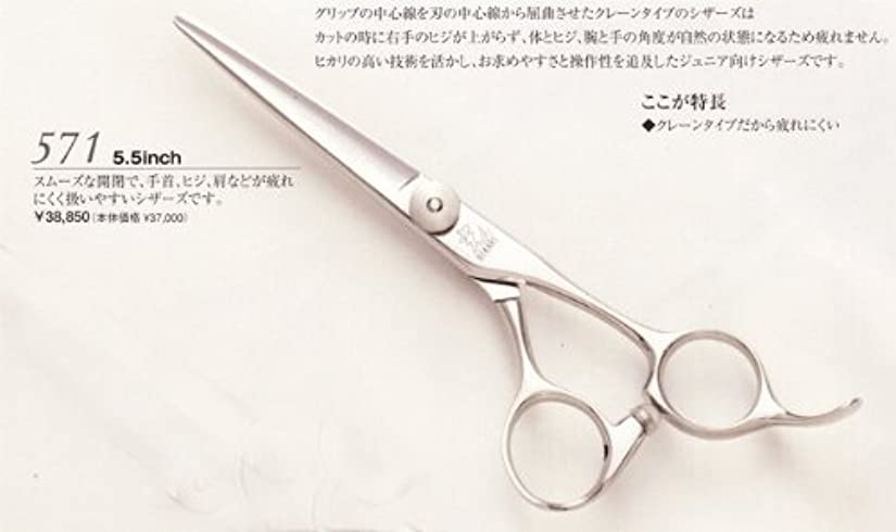 手クリーナー医薬品ヒカリシザー 光 ブレイズ571 5.5インチ