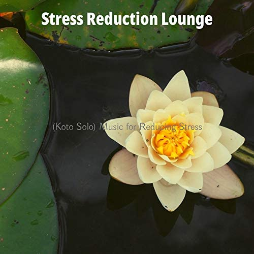 Stress Reduction Lounge