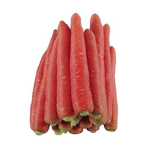 Graines de carotte géante 1800 + rouge sang atomique biologique sans OGM rouge carotte douce graines de la plus haute qualité pour la plantation de jardins de jardin