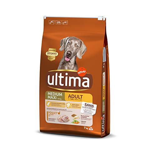 Ultima Trockenfutter für Hunde, mittelgroß, für Erwachsene, Huhn/Reis, 7 kg