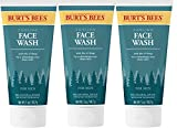 Burt's Bees Cooling Face Wash with Aloe & Hemp – For Men – 5 Ounces (3 Pack)