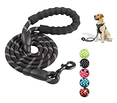 Chirano 5FT Strong Dog Leash, with Comfortable Padded Handle and Highly Reflective Threads, for Medium and Large Dogs Walking, Running or Trainning (Black)