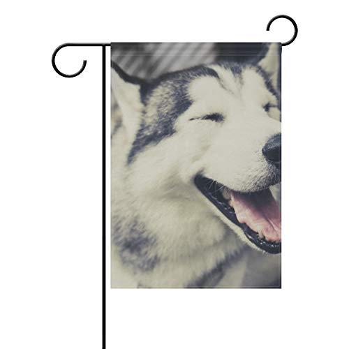 SENNSEE süße Husky-Hundehütten-Flagge, 30,5 x 45,7 cm, doppelseitig, dekorative Hofflagge für Party, Zuhause, Dekoration im Freien, Polyester, Multi, 28x40(in)