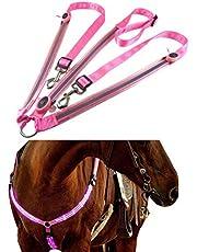 BSTQC - Collar de placa de pecho LED para caballos de alta visibilidad
