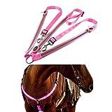 Auplew Imbracatura per Cavalli a LED, Attrezzatura da Equitazione per Fattoria all'aperto