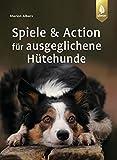Spiele und Action für ausgeglichene Hütehunde: Border Collie, Australian Shepherd und Co. rassegerecht auslasten