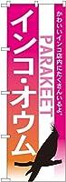 のぼり インコ オウム No.7521 [並行輸入品]