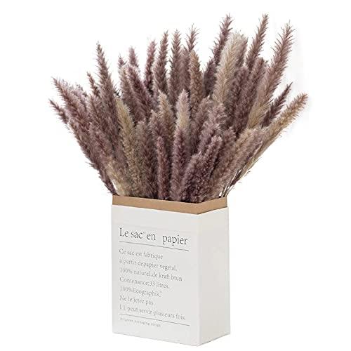 ukiyo 30 flores secas de Pampas para construir extra esponjosas reales en paquete de regalo respetuoso con el medio ambiente, longitud: 42-43 cm