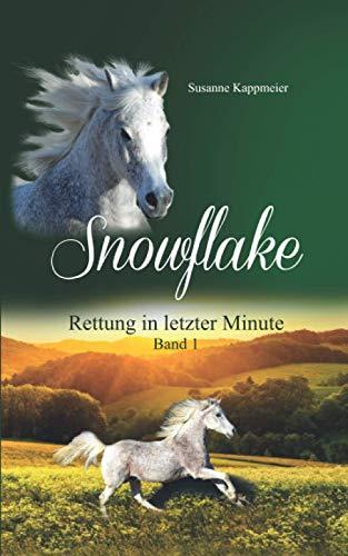 Snowflake: Rettung in letzter Minute