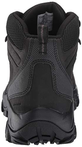 Columbia Men's Newton Ridge Plus II Waterproof Hiking Boot, Breathable, High-Traction Grip