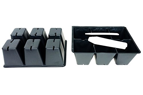 Seed starter trays 100 LARGE CELLS plus 20 bonus cells (20 trays of 6 cells each) + 20 Labels