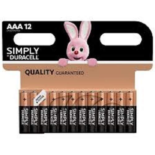 Duracell Plus Power Type AAA Alkaline Batteries, pack of 24