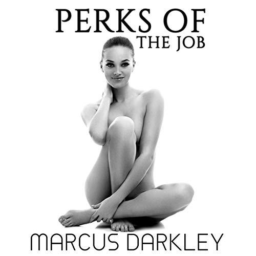 Perks of the Job audiobook cover art