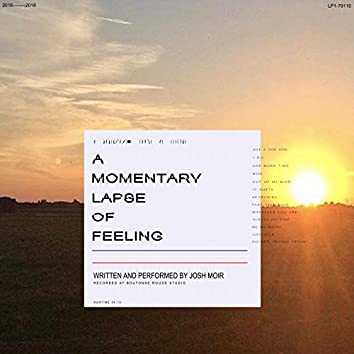A Momentary Lapse of Feeling