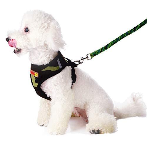 Petetpet Puppy Harness and Leash,Breathable Adjustable Pet Vest Harness Leash Set