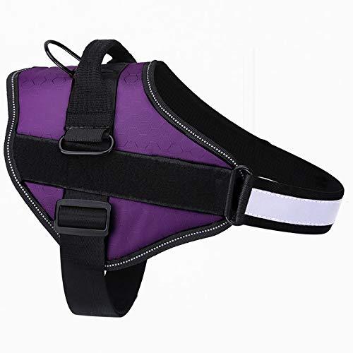 Belababy Dog Harness No-Pull Breathable Adjustable, Walking Training...