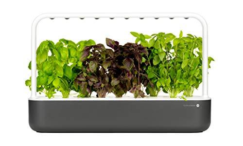 Emsa M5262000 Click & Grow Smart Garden 9 Indoor-Garten, passend für 9 Kräuterkapseln, grau