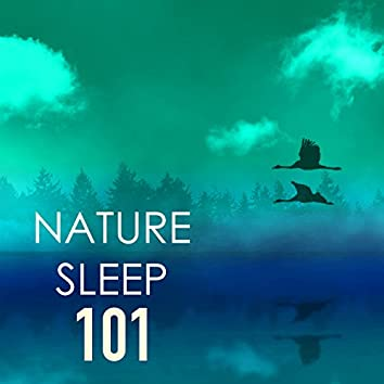 Nature Sleep 101 - Pillow Sounds for Deep Relaxation, Ocean, Rain Relaxing Ambience