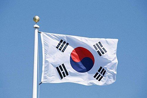 CDKJ 90 x 150 cm Flagge Südkorea Fahne
