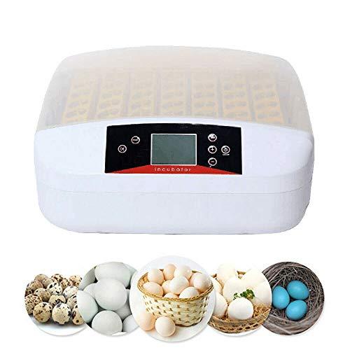 Brutmaschine Vollautomatisch Inkubator 56 Eier Brutautomat, Inkubator mit LED Temperaturanzeige und Präzieser Temperaturfühler, Temperatur und Feuchtigkeitsregulierung