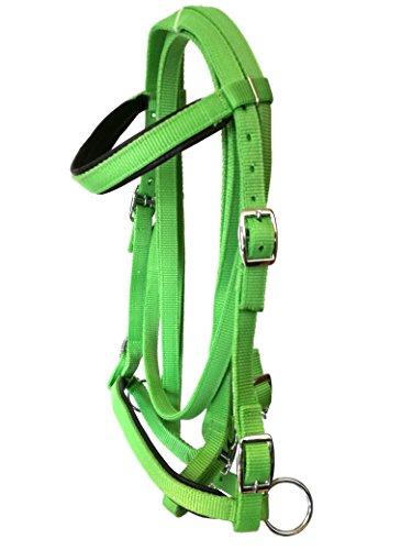 JF-Reitsport Trensen Set Nylon Zügeln Gebisslos grün shetty