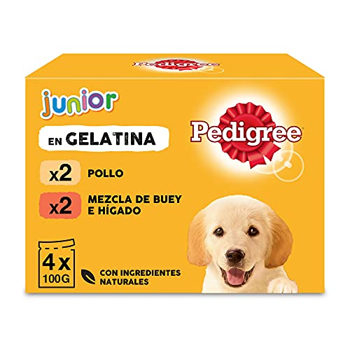 Pedigree Comida húmeda para Perros Junior, Sabor Pollo y Buey con Arroz en Gelatina, Multipack (13 Packs x 4 bolsitas x 100g) ✅