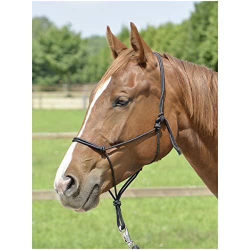 Busse Smooth II - Cabestro para nudos, Negro , Pony