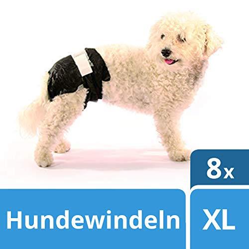 SwissPet Einweg-Hundewindeln für Welpen, Rüden und Hündinnnen, Verschiedene Größen XS - XXL (Gr. XL (8 STK))