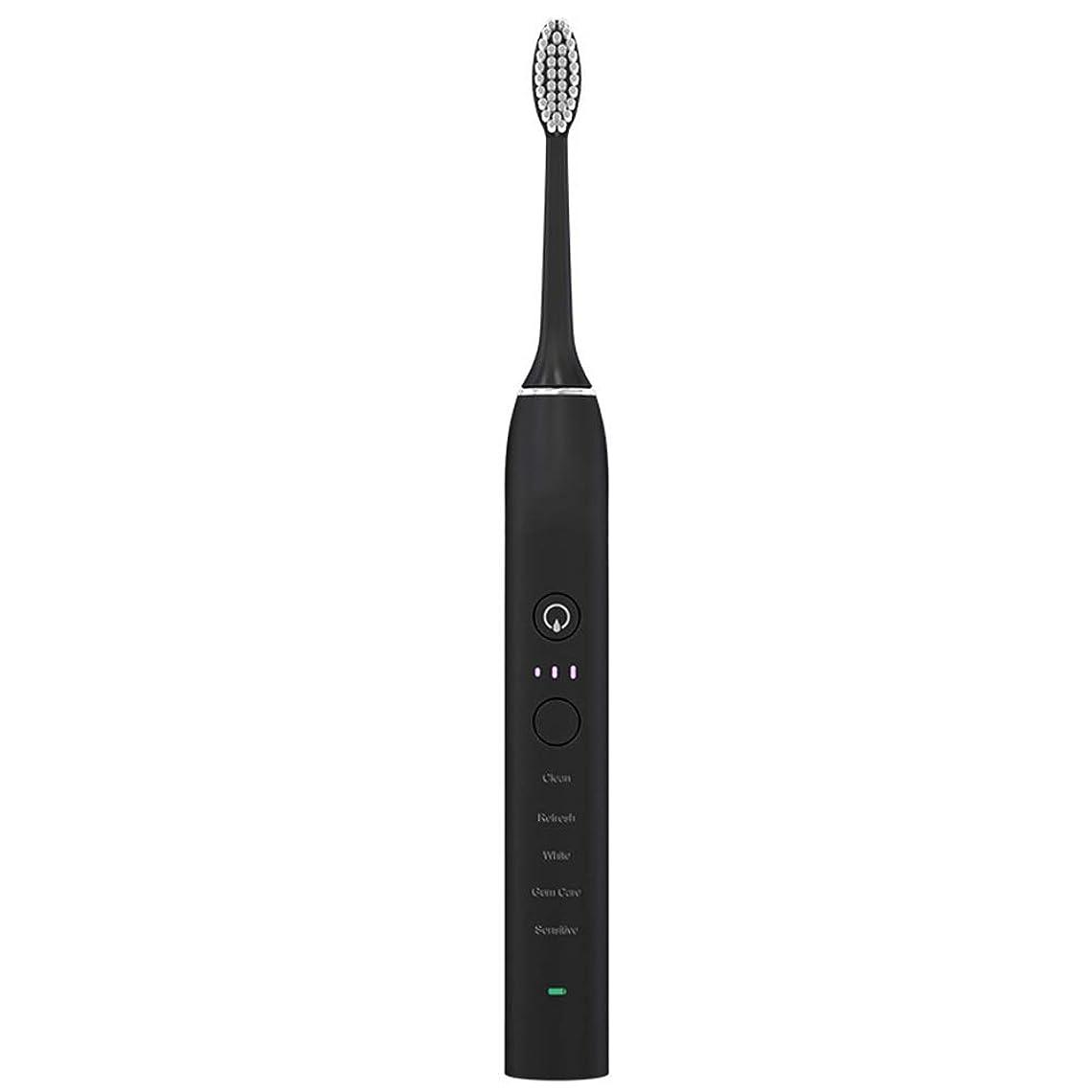 流スピーカーボイコット電動歯ブラシUSB充電式ソフトヘア歯ブラシ大人 完全な口腔ケアのために (色 : ブラック, サイズ : Free size)