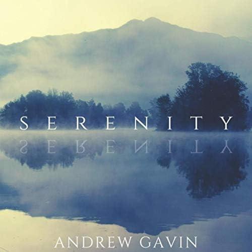 Andrew Gavin