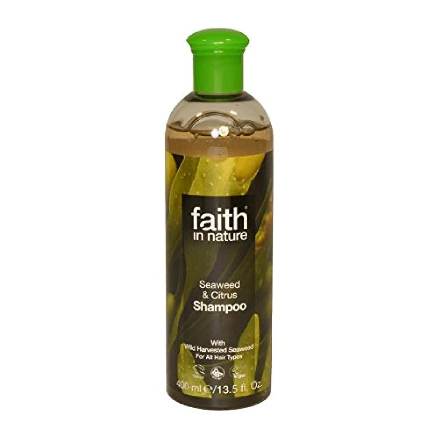 拘束エラーファイバ自然の海藻&シトラスシャンプー400ミリリットルの信仰 - Faith in Nature Seaweed & Citrus Shampoo 400ml (Faith in Nature) [並行輸入品]