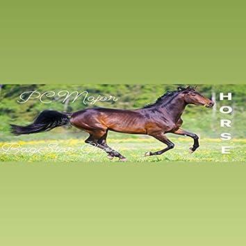 Horse (feat. BagStar Ghost)