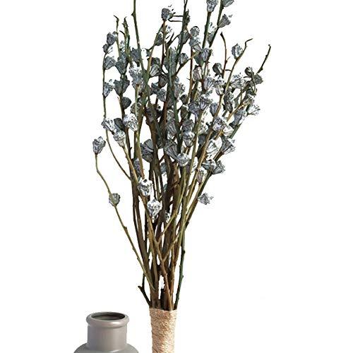 Yw-Flower Erhaltene frische Eukalyptus-Niederlassungen 1 Bündel, natürlicher getrockneter Eukalyptus-Frucht-Blumen-Anordnungs-Hochzeits-Inneneinrichtungen