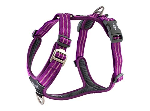 DOG Copenhagen Hundegeschirr V2 Walk Harness (Air) Purple Passion Größe S
