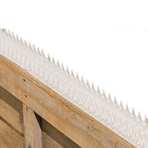Primrose 2 Spikes für Mauern und Zäune - Streifen - 8 Stück - 2 Stück