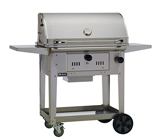 Bull Outdoor Products 67531 Bison Charcoal Stainless Steel Grill Review