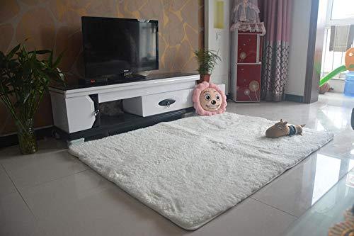 LAMEDER Home Alfombra Interior,Alfombras gruesas para Una Sala de estar Suave y antideslizante, alfombra de sofá antiestática Moderna y Minimalista con protección ambiental, blanquecina, 80 × 160 cm