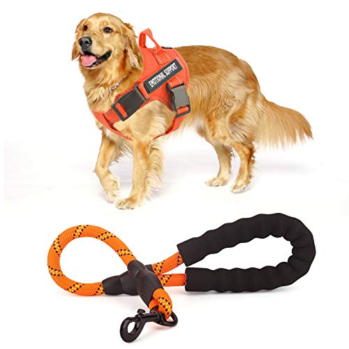 voopet Service Dog Harness (Orange,Large) and 2 Feet Dog Leash (Orange) with 4pcs Removeable Tags