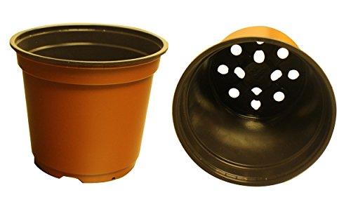 100neue 15,2cm Teku Kunststoff Anzuchttöpfen–Standard ~ Töpfe sind 15,2cm rund oben, und 12,7cm Tief. Farbe: Terracotta