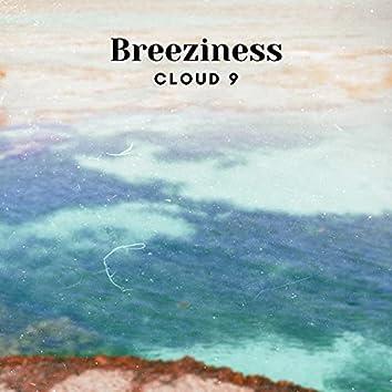 Breeziness