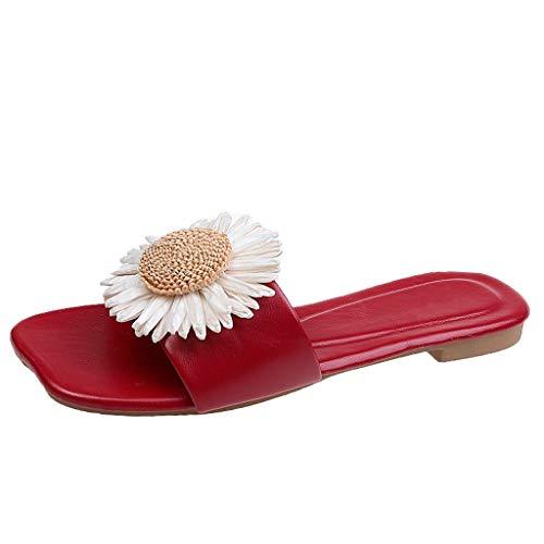 LHWY Chanclas Planas para Mujer Verano Sandalias Antideslizantes Zapatos de Playa y Piscina (36EU Rojo