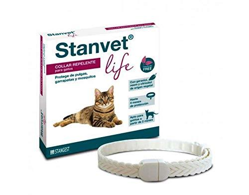 Stangest Collar Stanvet Life para Gatos Premium |Collar Repelente de Insectos | Protege de Garrapas, Pulgas y Mosquitos | Sin Insecticidas | Resistente al Agua | Activos Vegetales | 37 cm